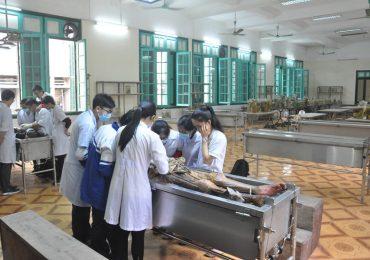 Điểm chuẩn Phân hiệu Đại học Y Hà Nội tại Thanh Hóa năm 2018 và chỉ tiêu tuyển sinh năm 2019